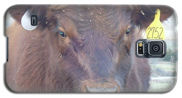 Galaxy S5 Case featuring the photograph Young Angus by J L Zarek