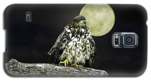 Galaxy S5 Case featuring the photograph Young Bald Eagle By Moon Light by John Haldane