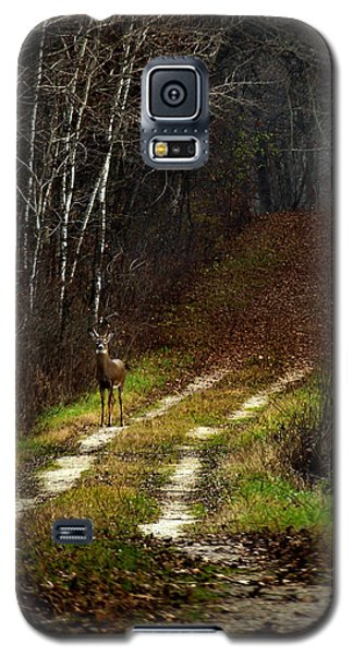 Young Buck And Autumn Galaxy S5 Case