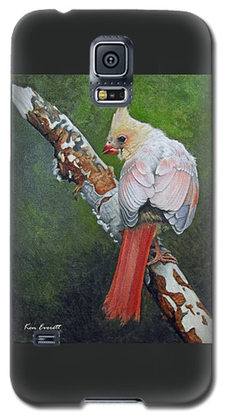 Young Cardinal  Galaxy S5 Case by Ken Everett