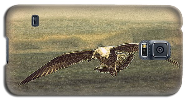 Young Gull Galaxy S5 Case by Linsey Williams