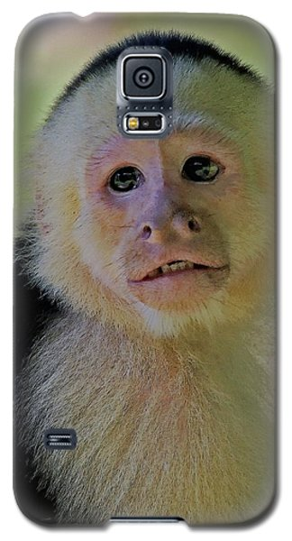 Young Innocence Galaxy S5 Case