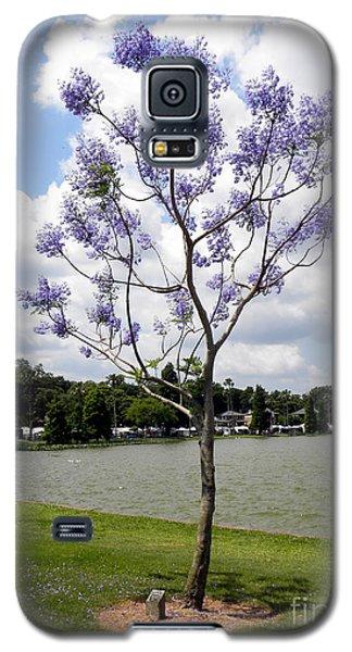 Young Jacaranda Tree Galaxy S5 Case by Terri Mills