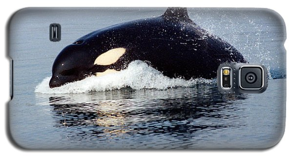 Galaxy S5 Case featuring the photograph Young Orca Off The San Juan Islands Washington 1986 by California Views Mr Pat Hathaway Archives