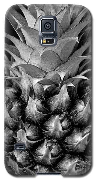 Young Pineapple Galaxy S5 Case