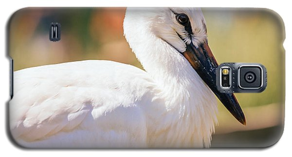 Young Stork Portrait Galaxy S5 Case by Pati Photography