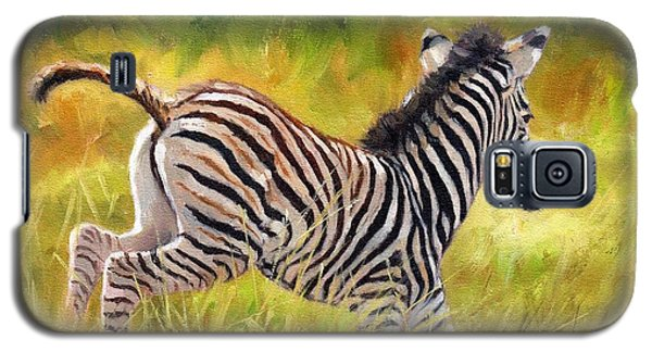 Young Zebra Galaxy S5 Case by David Stribbling