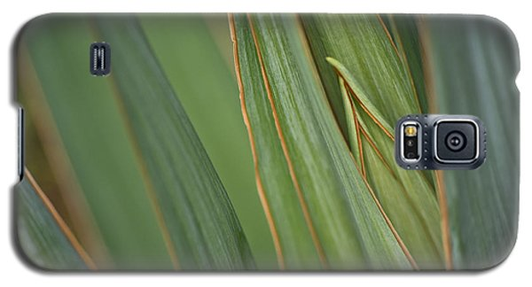 Galaxy S5 Case featuring the photograph Yucca by Adria Trail
