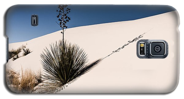 Galaxy S5 Case featuring the photograph Yucca In The Sand II by Sherry Davis