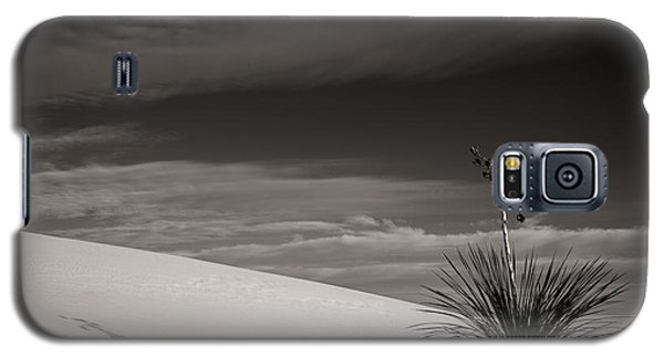 Yucca In The Sandsiii Galaxy S5 Case
