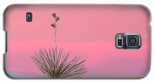 Yucca On Pink And White Galaxy S5 Case by Kristal Kraft
