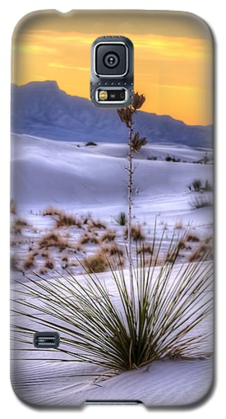 Galaxy S5 Case featuring the photograph Yucca On White Sand by Kristal Kraft