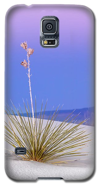 Galaxy S5 Case featuring the photograph Yucca Pink And Blue by Kristal Kraft