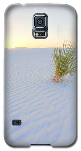 Galaxy S5 Case featuring the photograph Yucca Plant At White Sands by Alan Vance Ley