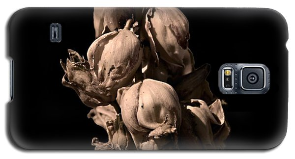 Yucca Galaxy S5 Case