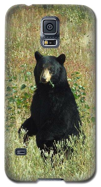 Yukon Black Bear Galaxy S5 Case