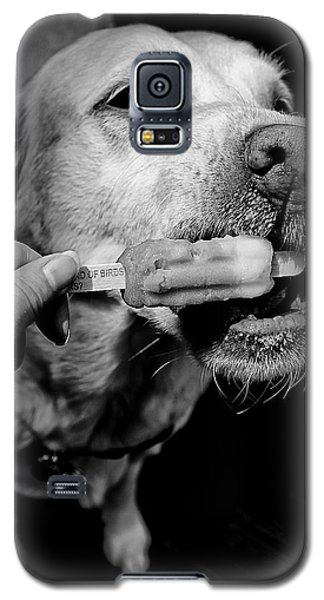 Galaxy S5 Case featuring the photograph Yum Popsicle by Beth Akerman
