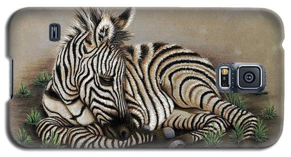 Zamir Galaxy S5 Case