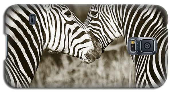 Galaxy S5 Case featuring the photograph Zebra Affection by Liz Leyden