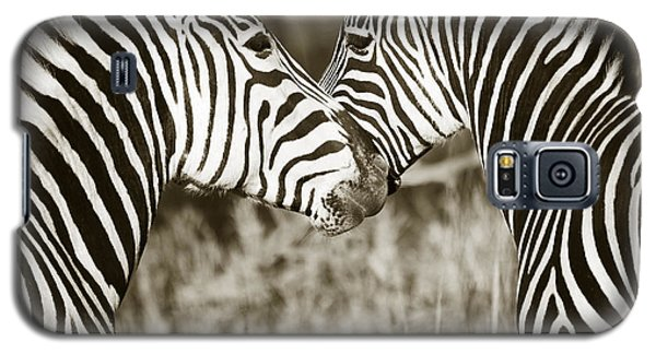Zebra Affection Galaxy S5 Case by Liz Leyden