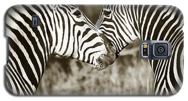 Zebra Affection Galaxy S5 Case