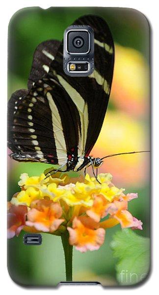 Zebra Butterfly Galaxy S5 Case