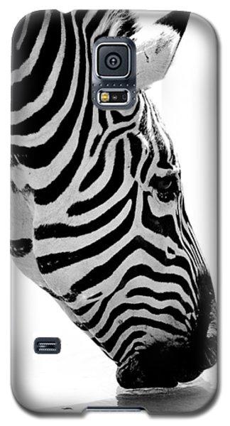 Galaxy S5 Case featuring the photograph Zebra by Elizabeth Budd
