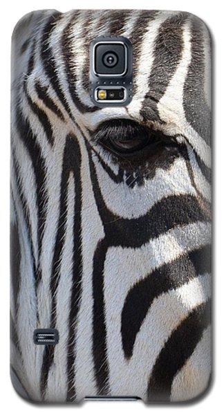 Zebra Eye Abstract Galaxy S5 Case by Maria Urso