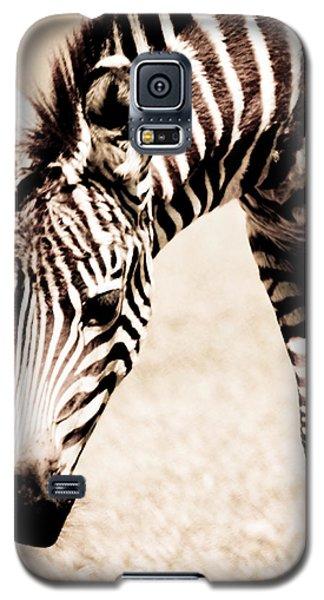 Zebra Foal Sepia Tones Galaxy S5 Case