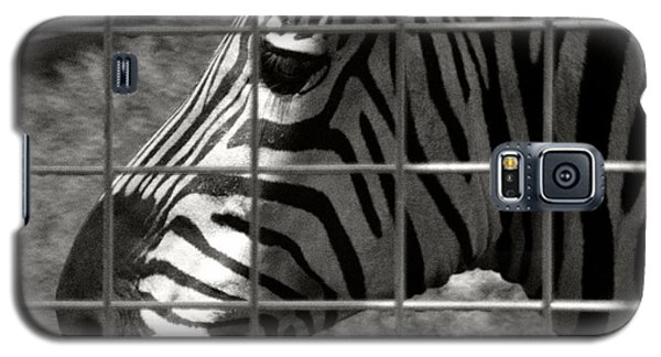 Galaxy S5 Case featuring the photograph Zebra Grid by Tom Brickhouse