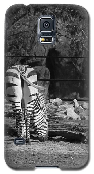 Zebra I Galaxy S5 Case