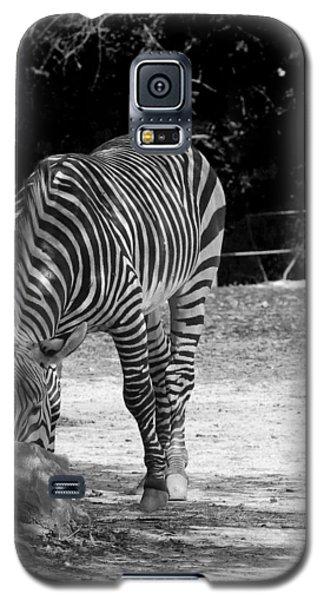 Zebra II Galaxy S5 Case