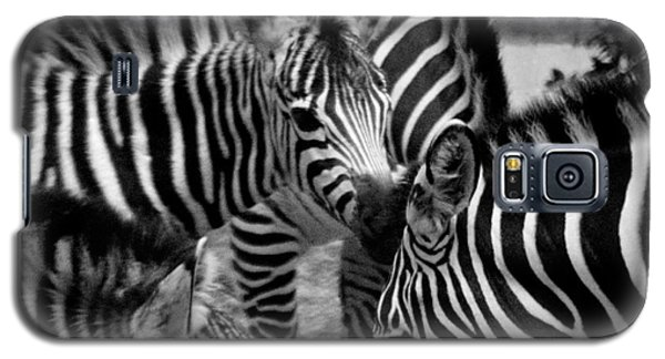 Galaxy S5 Case featuring the photograph Zebra In A Crowd by Tom Brickhouse