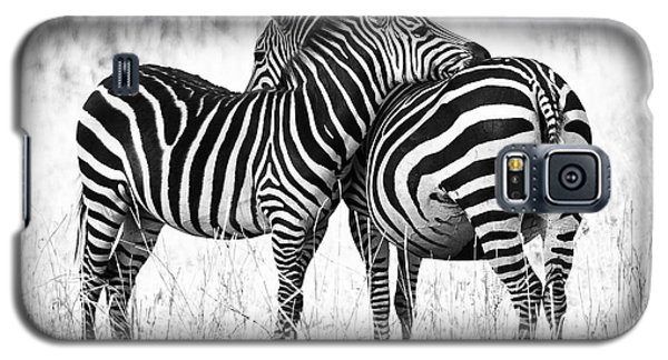 Zebra Love Galaxy S5 Case by Adam Romanowicz