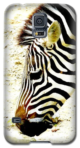 Zebra Mug Shot Galaxy S5 Case