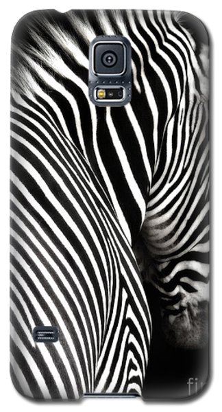 Zebra On Black Galaxy S5 Case