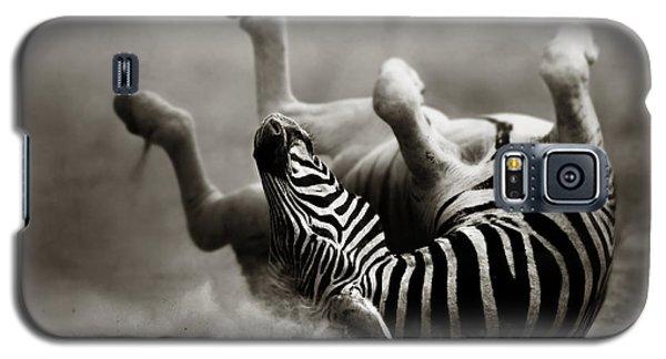 Zebra Rolling Galaxy S5 Case