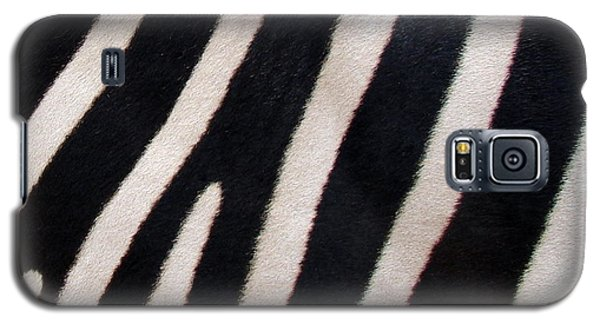 Galaxy S5 Case featuring the photograph Zebra Stripes by Ramona Johnston