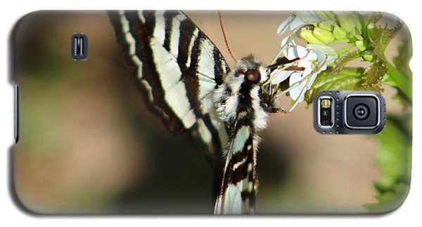 Zebra Swallowtail Galaxy S5 Case