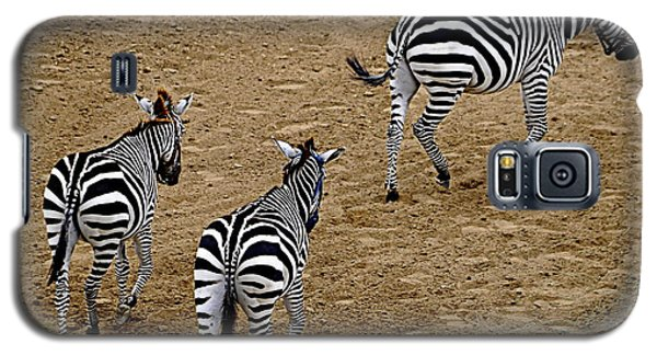 Galaxy S5 Case featuring the photograph Zebra Tails by AJ  Schibig