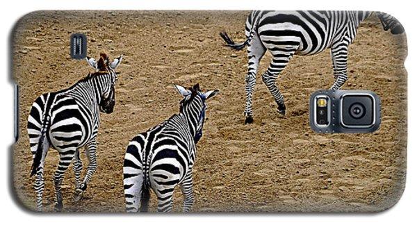Zebra Tails Galaxy S5 Case by AJ  Schibig