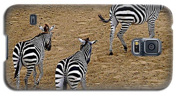 Zebra Tails Galaxy S5 Case