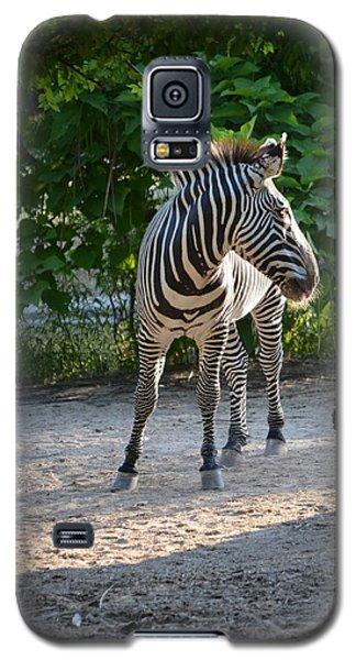 Zebra Galaxy S5 Case