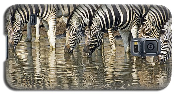 Galaxy S5 Case featuring the photograph Zebras At Water Hole by Dennis Cox WorldViews