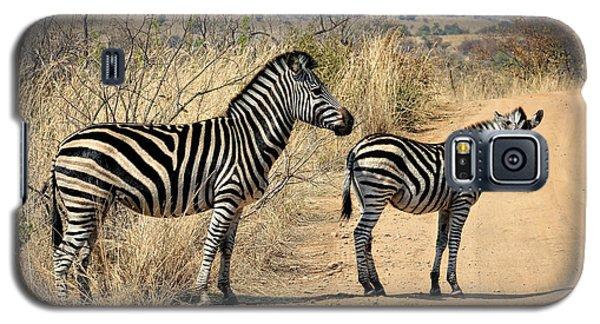 Zebras Crossing Galaxy S5 Case