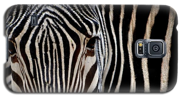 Galaxy S5 Case featuring the photograph Zebras Face To Face by Nadalyn Larsen