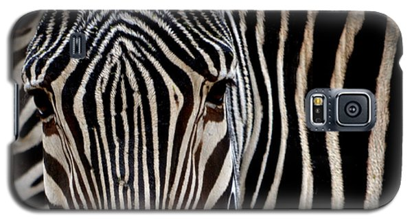 Zebras Face To Face Galaxy S5 Case by Nadalyn Larsen