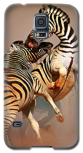 Zebras Fighting Galaxy S5 Case