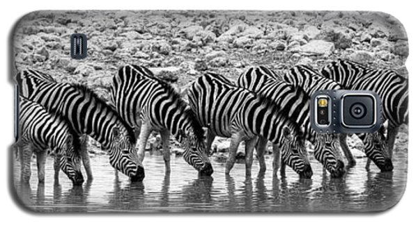 Galaxy S5 Case featuring the photograph Zebras On A Waterhole by Juergen Klust