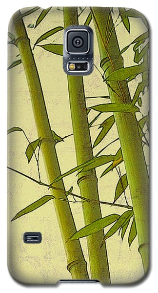 Zen Bamboo Abstract I Galaxy S5 Case by Marianne Campolongo